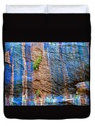 Pattern On Wet Canyon Wall From River Walk In Zion Canyon In Zion National Park-utah  Duvet Cover