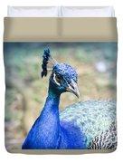 Pavo Cristatus II Indian Blue Peacock Duvet Cover