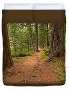 Peaceful Path To Cheakamus Lake Duvet Cover