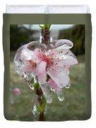 Peach Blossom In Ice Duvet Cover