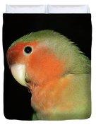 Peach Faced Lovebird Duvet Cover