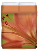 Peach Lily 1 Duvet Cover