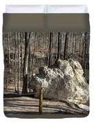 Peach Tree Rock-6 Duvet Cover
