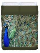 Peacock 21 Duvet Cover