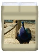 Peacock At The Fence Duvet Cover
