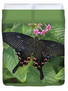 Peacock Butterfly Arizona Duvet Cover