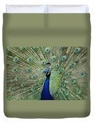 Peacock Display Duvet Cover
