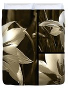 Peacock Gladiolus Triptych Duvet Cover