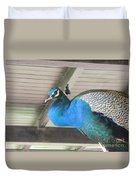 Peacock In The Rafters Duvet Cover