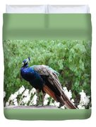 Peacock On A Rock 1 Duvet Cover