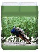 Peacock On A Rock 2 Duvet Cover