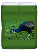 Peacock Portrait 4 Duvet Cover