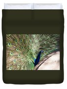 Peacock Show Duvet Cover