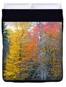Peak And Past Foliage Duvet Cover