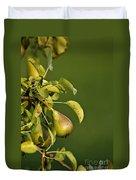 Pear Tree Duvet Cover