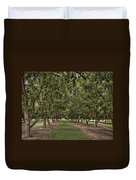 Pecan Orchard Sahuarita Arizona Duvet Cover