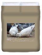 Pecking Pigeons Duvet Cover