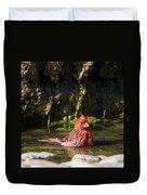 Pedernales Park Texas Bathing Cardinal Duvet Cover