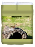 Pedernales Park Texas Carolina Wren Duvet Cover