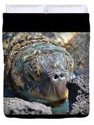 Peek-a-boo Turtle Duvet Cover