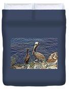 Pelican And American Black Duck Duvet Cover