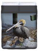 Pelican On Rocks Duvet Cover