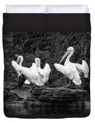 Pelicans Mono Duvet Cover