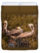 Pelicans On Watch Duvet Cover