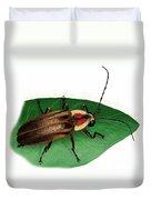 Pennsylvania Firefly Duvet Cover