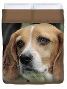 The Beagle Named Penny Duvet Cover