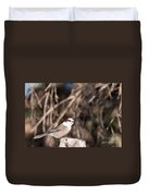 Perched Grey Jay Perisoreus Canadensis Watching Duvet Cover