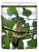Perched Hummingbird Duvet Cover