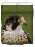 Peregrine Falcon Portrait Ecuador Duvet Cover