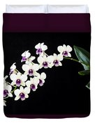 Perfect Phalaenopsis Orchid Poster Duvet Cover