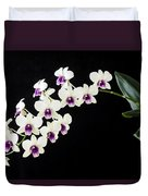 Perfect Phalaenopsis Orchid Duvet Cover