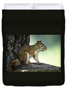 Perky Squirrel Duvet Cover