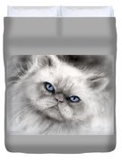 Persian Cat With Blue Eyes Duvet Cover