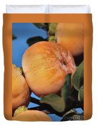 Persimmons Close Up Duvet Cover