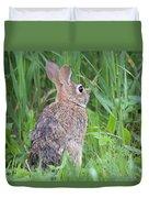 Peter Rabbit Duvet Cover