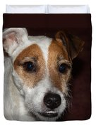 Petey Dog Jack Russell Duvet Cover