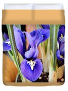 Petite Dutch Irises Duvet Cover