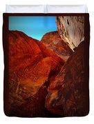 Petroglyphs Valley Of Fire Nevada Duvet Cover