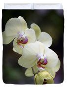 Phal Ming Chao Dancer 0754 Duvet Cover