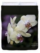 Phalaenopsis Ming Chao Dancer   8585 Duvet Cover