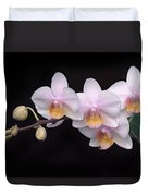 Phalaenopsis Orchid Duvet Cover