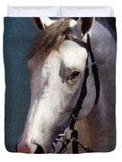 Phantom Lover - Portrait Of A Race Horse Duvet Cover