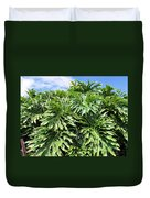 Philodendron 1 Duvet Cover