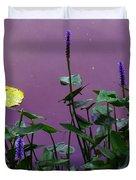 The Pillows Spiky Seeds