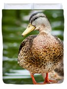 Picture Perfect - Mallard Duck Duvet Cover