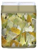 Pierid Butterfly Pieridae Puddling Duvet Cover